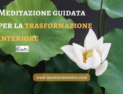 Meditazione sul fiore