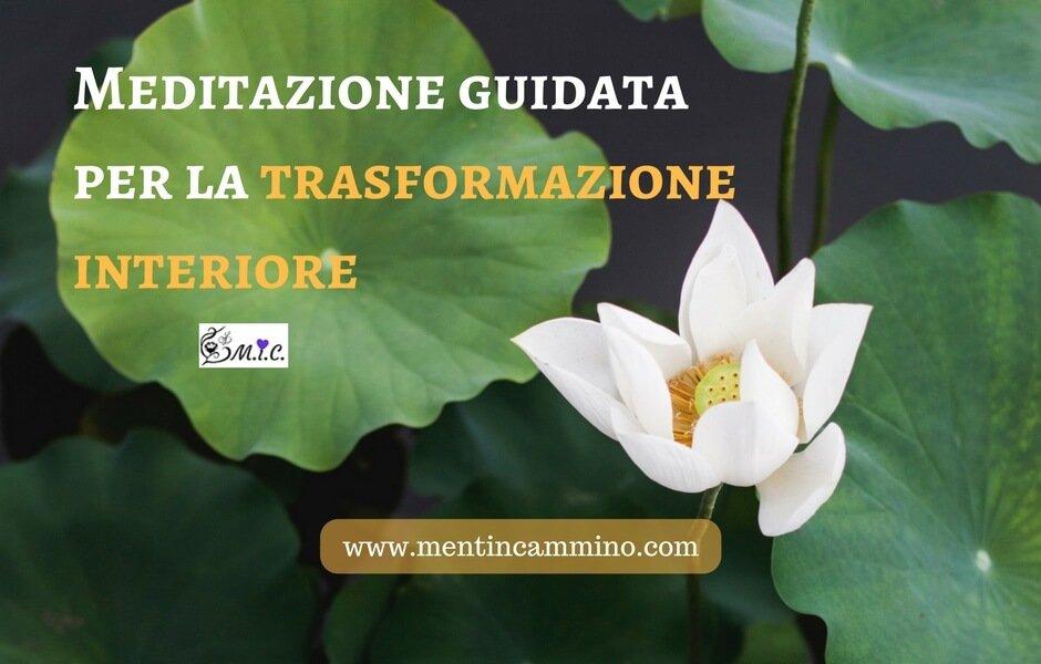 meditazione guidata sul fiore di loto